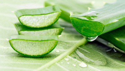 How To Use Aloe Vera For A Better You