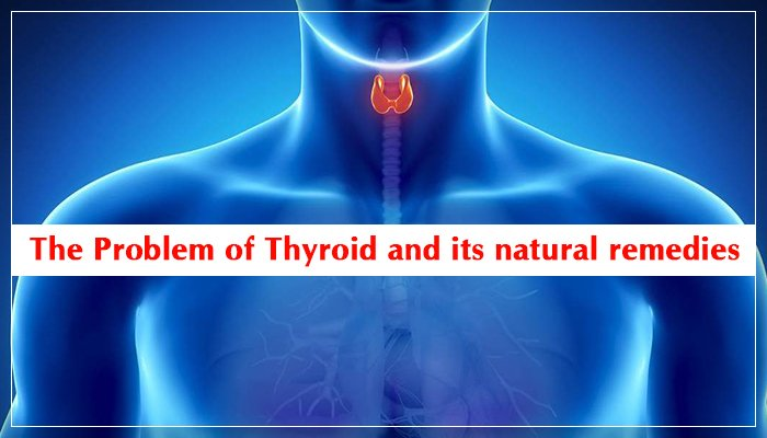 The Problem of Thyroid and its natural remedies