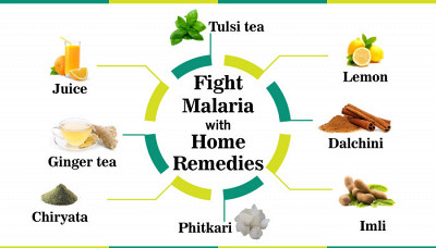 Fight Malaria with 14 Easy Home Remedies