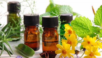 9 Essential Oils for Skin: Essentials for Your Beauty Regime!